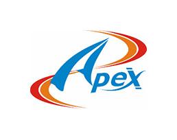 APEX GASKET