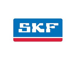 SKF-CHICAGO RAWHIDE